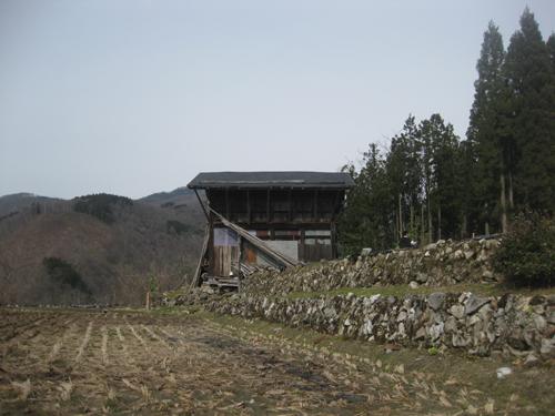 tanekura7.jpg